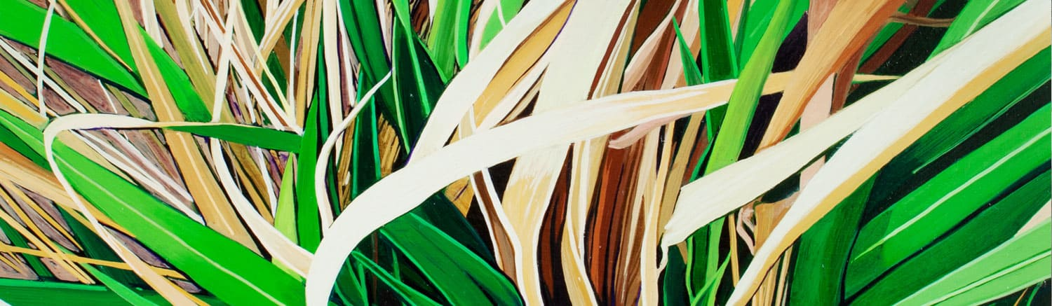 close up painting of palm plant